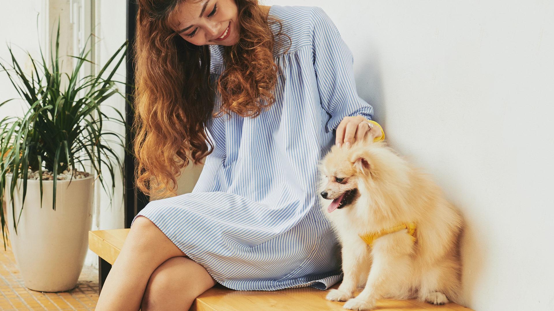 hondenvoer-voor-overgevoelige-honden